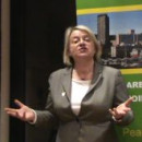 Link to Sheffield Needs Green Ideas-video